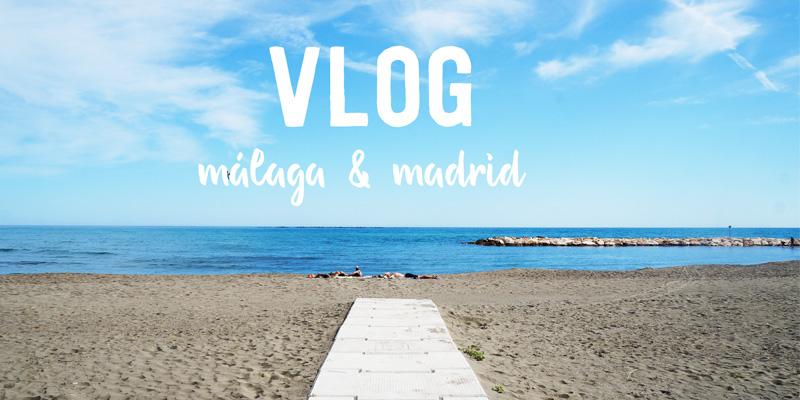 vlogpreviewblog